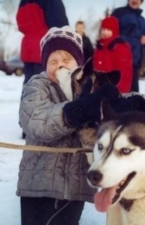 Old line -koirat rakastavat lapsia