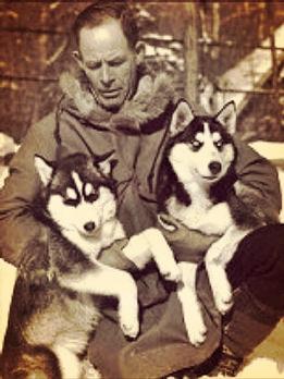 Chinook kennelin narttupentuja 30-luvulla