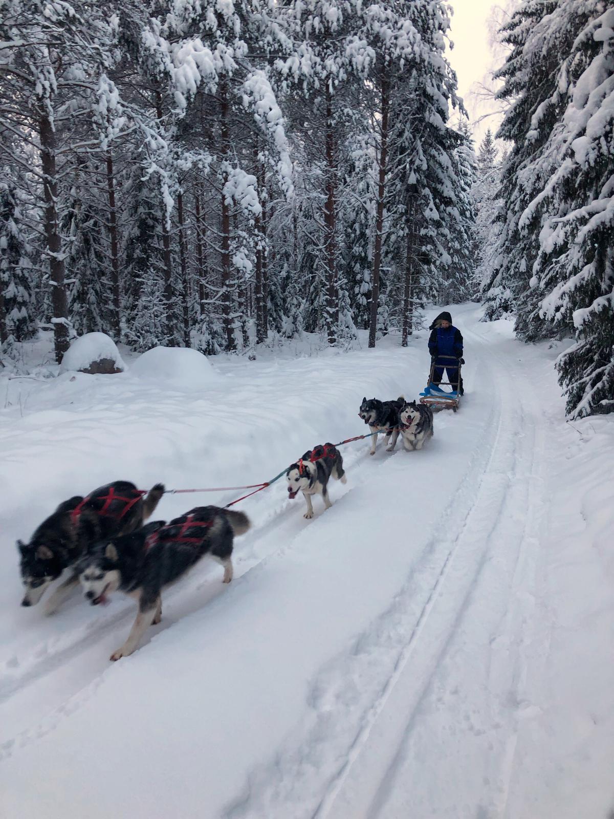 SPY:n talvipäivillä Jyväskylässä 2019